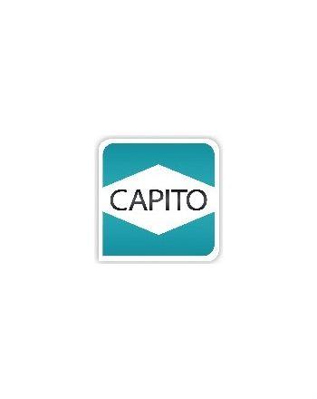 Kunststoffgriff  CAPITO