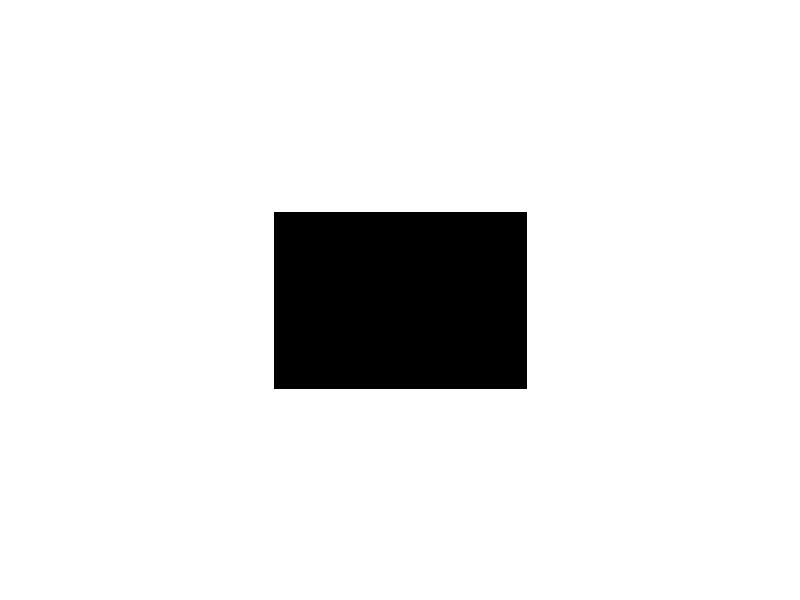 Glättekelle L.280mm B.130mm Zahn 8x8 rostfrei,m.H-Heft VA S.0,7mm PROMAT