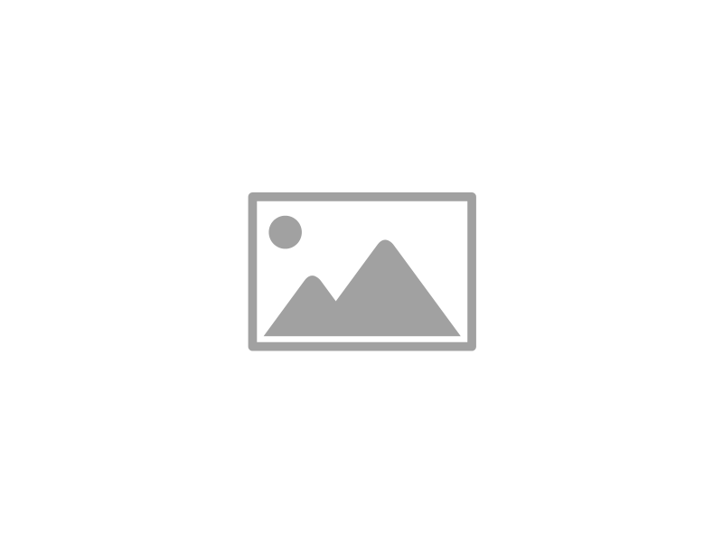 Berliner Maurerkelle L220xB200mm m.2K-Griff STA